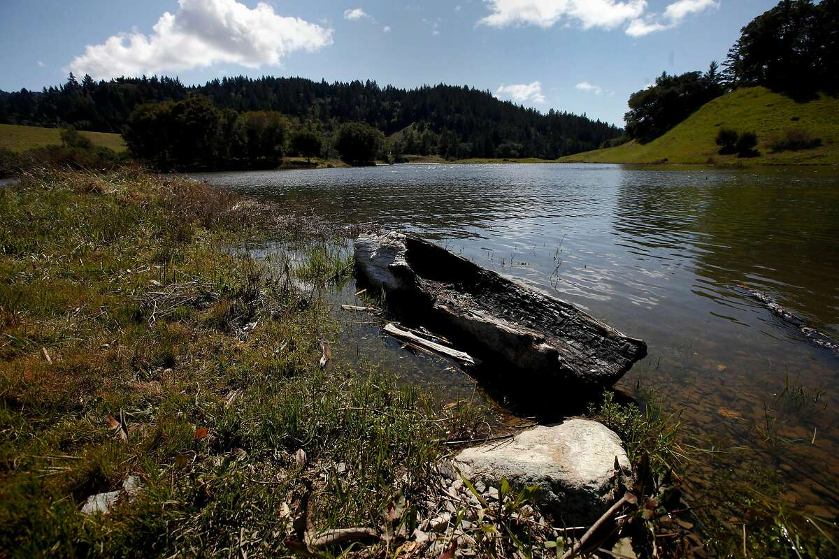 Bon Tempe Lake is one of seven lakes to reach 100 percent full in the Marin Watershed. The others are Lagunitas, Alpine, Kent, Soulajule, Phoenix and Nicasio.