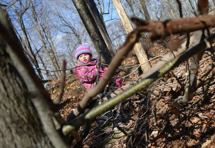 Adrianna Perisa, 4, of Greenwich, adds sticks to a survival shelter during the Family Nature Play Series at Audubon Greenwich in Greenwich, Conn. Sunday, March 6, 2016. Taught by Education Coordinator Susan Matthews, families learned how to collect sticks to build a campfire and build a survival lean-to shelter. The Family Nature Play Series occurs on the first Sunday of every month and provides hands-on, educational activities for children and parents. The next two sessions will be wildlife tracking and a sensory nature hike.