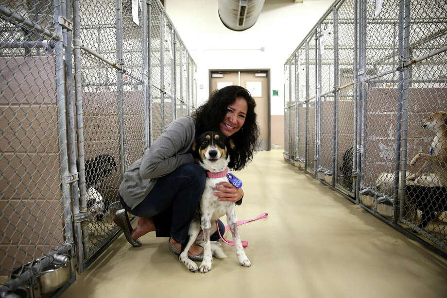 Martha Marquez Media Specialist for HCPHES, poses with a dog  at the Harris County Animal Shelter  on Friday, March 4, 2016, in Houston. Photo: Elizabeth Conley, Houston Chronicle / © 2016 Houston Chronicle