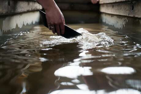 Left: There's still plenty of gold left in the Mother Lode, and hopeful prospectors still try their hand at panning. Photo: James Tensuan, Special To The Chronicle