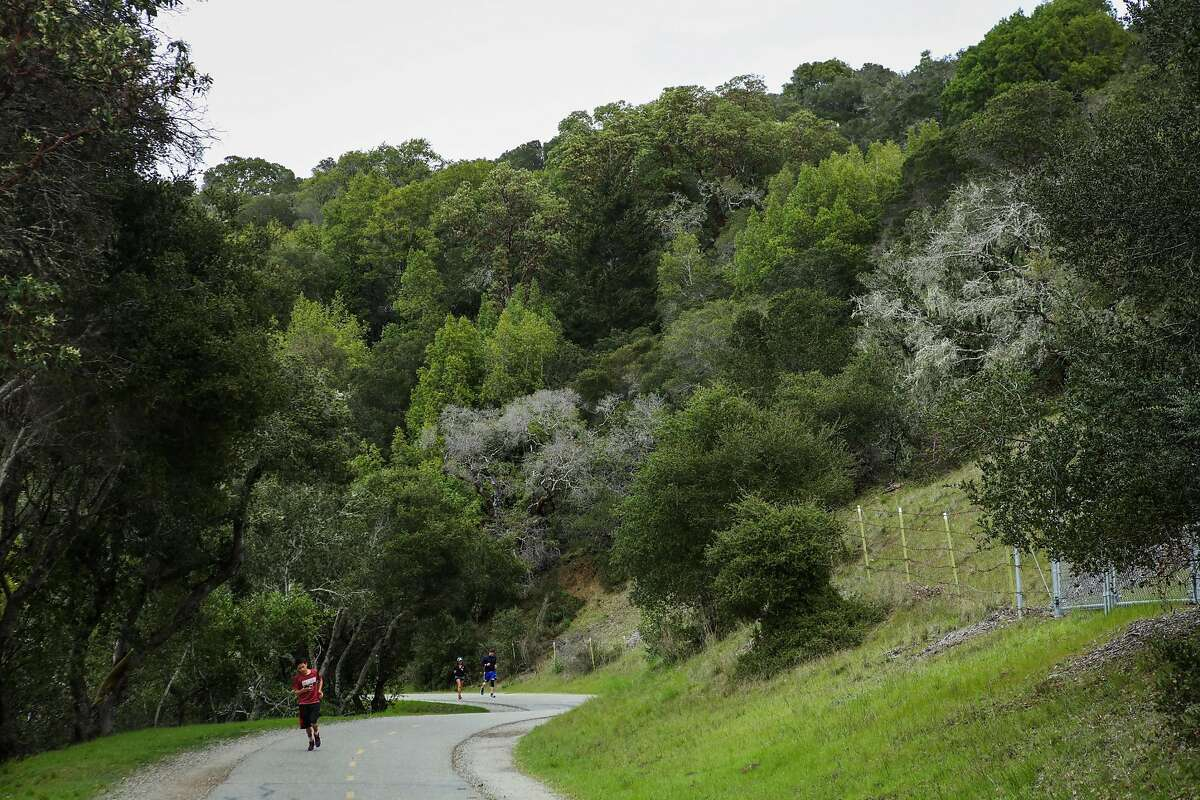 People go for a run along the Crystal Springs Regional trail in San Mateo, California, on Wednesday, March 2, 2016. The trail lies on the Peninsula Watershed Lands.