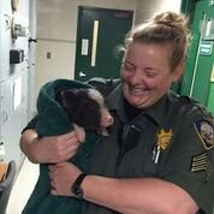 Sgt. Ellie Sadler of the San Francisco Animal Care &Control holds a piglet nicknamed Janice after it was caught running around the Mission District Tuesday.