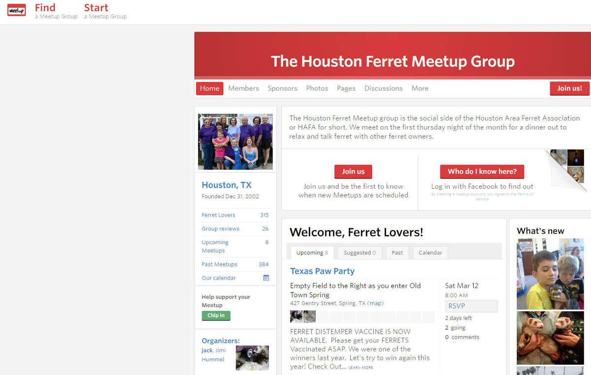 Houston Ferret Group