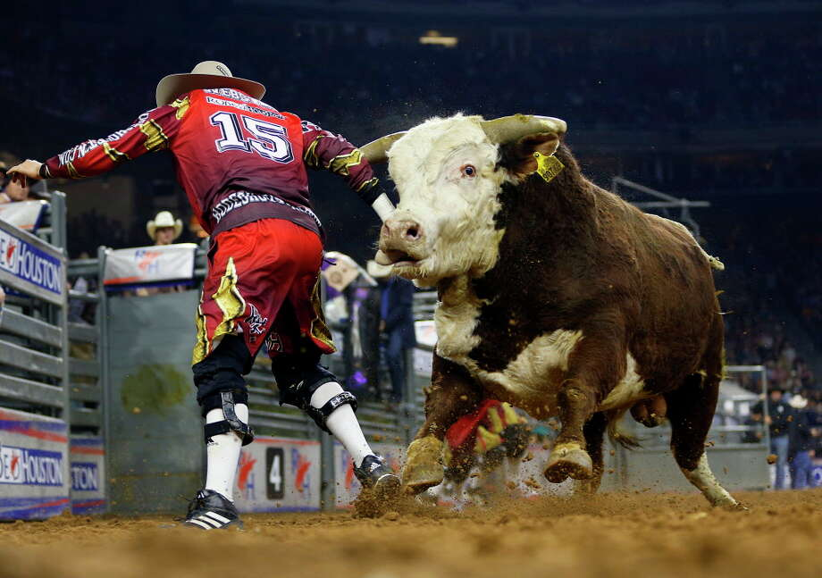 4. NRG Center: The site of livestock shows, auctions, exhibits and a marketplace, NRG Center is busy around the clock. Look for the day's schedule online. Among the highlights are the following: Photo: Mark Mulligan, Houston Chronicle / © 2016 Houston Chronicle