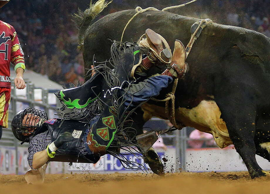 Cody Rostockyj flies off of a bull at the Houston Livestock Show and Rodeo, Monday, March 7. (For more Cody cowboys, scroll through the slideshow.) Photo: Mark Mulligan, Houston Chronicle / © 2016 Houston Chronicle