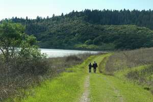 From Moore Creek Park, Napa County's newest and largest park, you get trails that run in the foothills and aside beautiful Lake Hennessey, a great lake for kayaking and fishing for bass in small boats