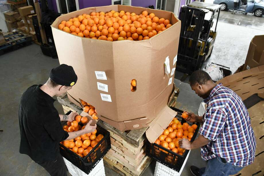 Dallin Kapp (left) and Jonel Jimmerson sort oranges for Imperfect, a company that delivers produce in the East Bay. Photo: Michael Short Michael Short, Special To The Chronicle