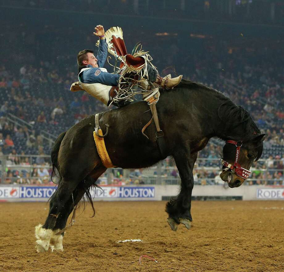 """Champion's skill at bareback riding is mostly instinct, says his mentor, Mark Eakin of Tarleton State University. """"Riding bucking horses, you could tell it was what he was meant to do,"""" Eakin says. Photo: Karen Warren Karen Warren, Houston Chronicle / © 2015  Houston Chronicle"""