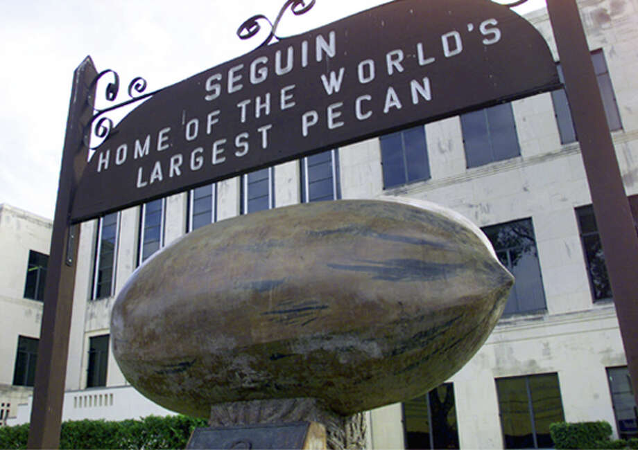 """The Original World's Largest Pecan"" sits on the lawn of the Guadalupe County Courthouse. Photo: TOM REEL, STAFF / SAN ANTONIO EXPRESS-NEWS"