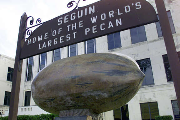 """The Original World's Largest Pecan"" sits on the lawn of the Guadalupe County Courthouse."