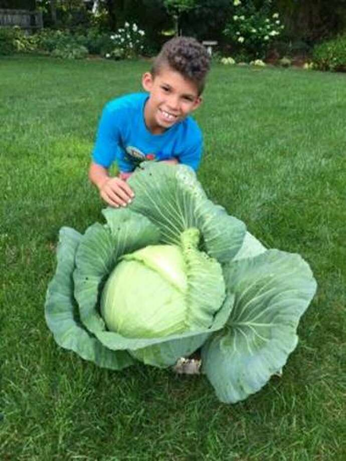 Louis Hawkins III, a student at Thomas W. Mahan Elementary School,  grew a beautiful, HUGE cabbage (13 lbs!).