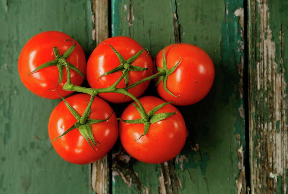 Tomatoes photographed Thursday, March 3, 2016, for a garden story on growing tomatoes.( Karen Warren / Houston Chronicle ) Photo: Karen Warren, Staff / © 2015  Houston Chronicle
