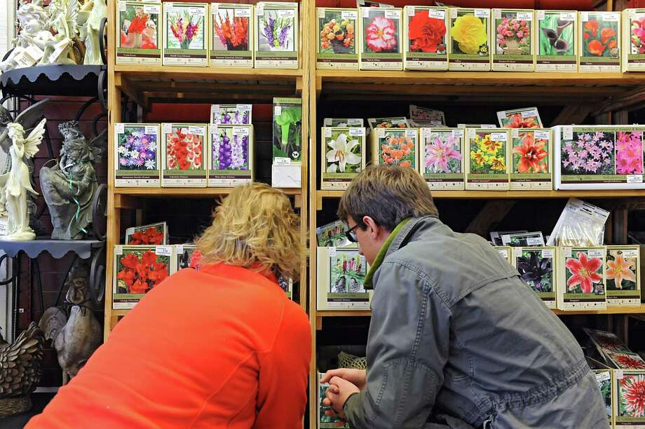 Dawn Wood of Glenville, left, and her son Zach Wood of Brewer, Maine look at flower seeds and bulbs at Faddegon's Nursery on Friday, March 11, 2016 in Latham N.Y. (Lori Van Buren / Times Union) Photo: Lori Van Buren / 10035811A