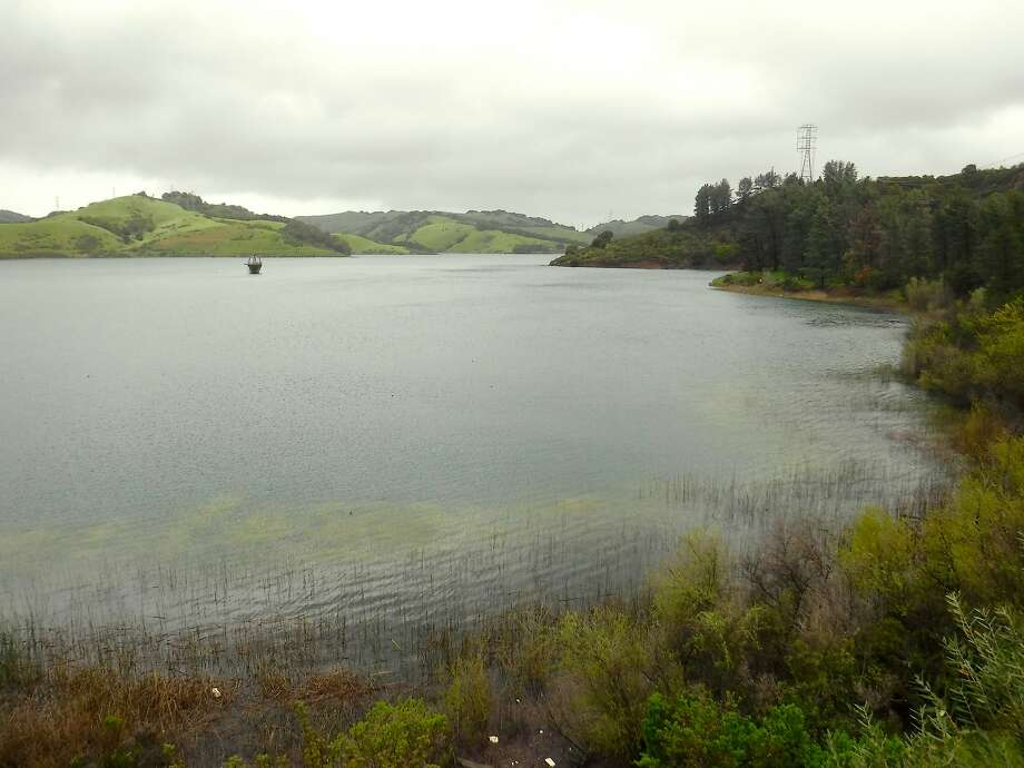Briones Reservoir, which is north of Orinda,had60,040 acre feet of waterstorage on March 17, 2016. The maximum storage is 60,510 acre feet of water, and the reservoir is currently 99% full, the East bay Municipal Utility District reports. Photo: Tom Stienstra, Tom Stienstra / The Chronicle