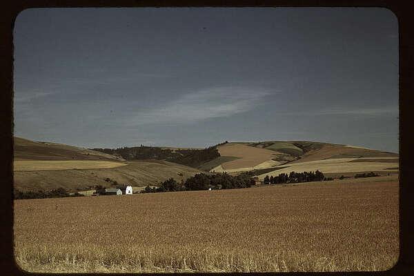 Wheat farm, Walla Walla, Washington, shown here in July 1941. Photo by Russell Lee.