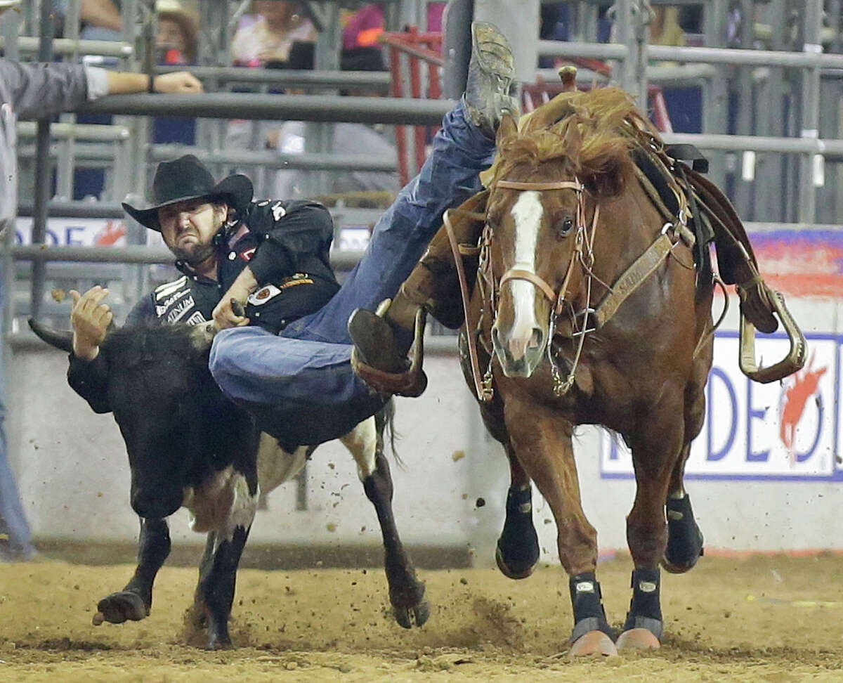Luke Branquinho of Los Alamos, CA competes in steer wrestling at RodeoHouston during the Houston Livestock Show and Rodeo in NRG Stadium Tuesday, March 15, 2016, in Houston.