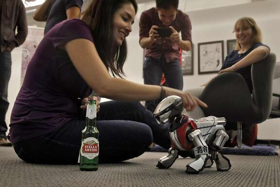 Carolyn Estrada plays with an Aibo robotic dog during a social meetup of San Francisco's community of robot aficionados, and their robots put on by Silicon Valley Robotics at Comet Labs in San Francisco, Calif., on Wednesday, March 16, 2016.