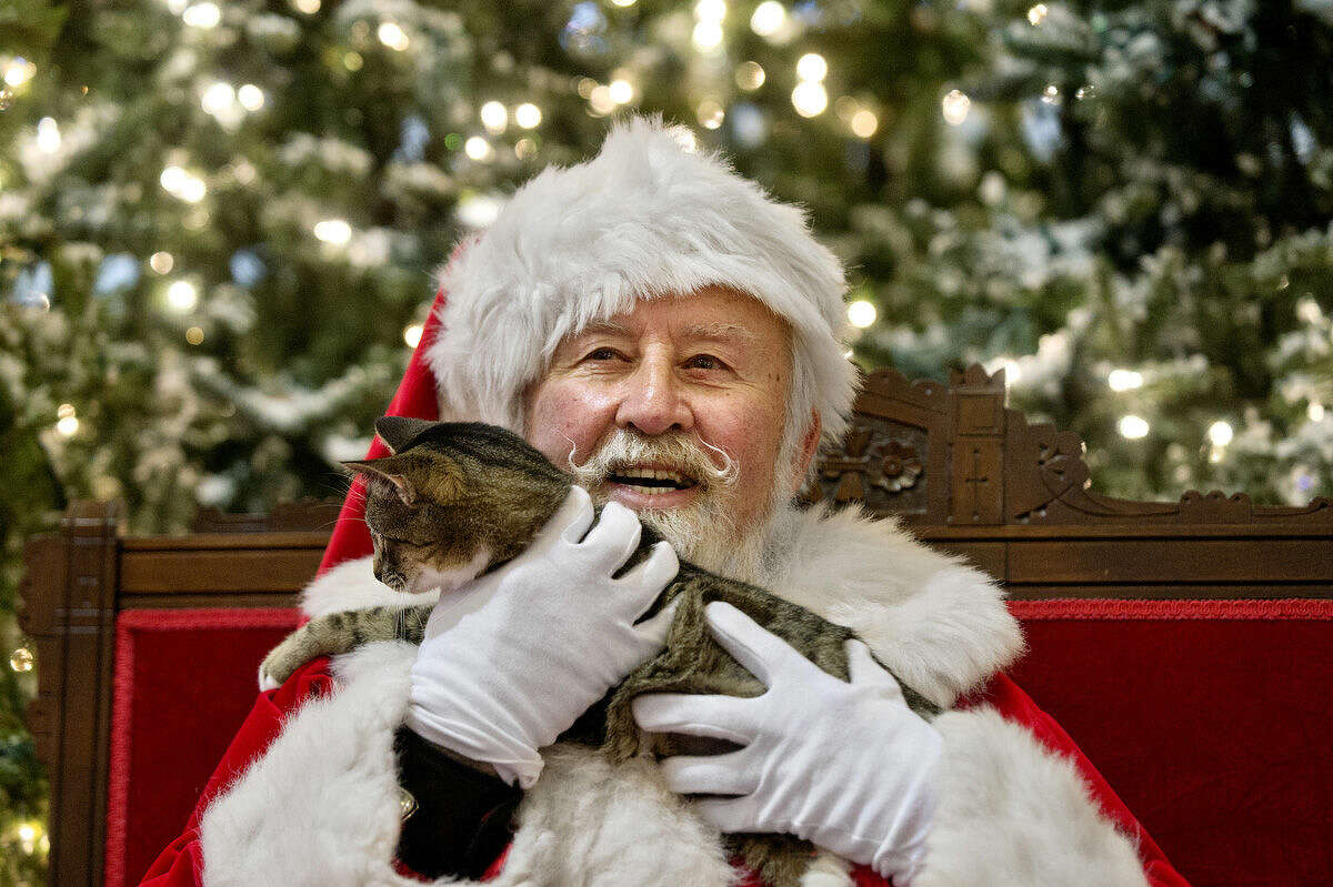 Santa visits with Fidelis the cat on Monday at the Midland Mall during Pet Night with Santa.