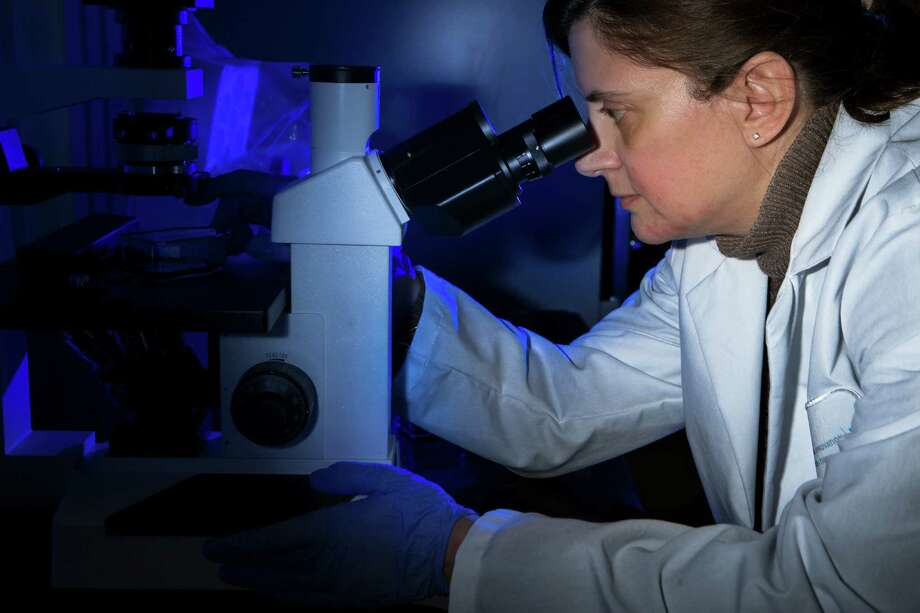Raffaella Soldi director of biology of Beta Cat Pharmaceuticals looks through a microscope at the JLABS, part of Johnson & Johnson Innovation, LLC., Thursday, March 17, 2016, in Houston. JLABS is a network of incubators providing rising companies with many of the advantages of being in a big company without the capital investment. ( Marie D. De Jesus / Houston Chronicle ) Photo: Marie D. De Jesus, Staff / © 2016 Houston Chronicle