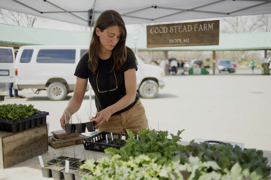 Sarah Longstreth packs up after the Midland Area Farmers Market closed on Wednesday. This is Longstreth's first year being at the market with organic goods from Good Stead Farm. Photo: Neil Blake | Nblake@mdn.net