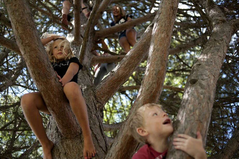"From left: Lila Rekeweg, 6, Emma Rekeweg, 13, and Logan Bellinger, 7, all of Midland climb up a tree enjoying the summer weather at Plymouth Park along with their neighbors Haleigh DeForest, 13, and Jenna Rekeweg, 8, Friday afternoon. ""We were playing hide-and-seek,"" DeForest said. ""Then we decided to hide in the tree after that we just wanted to climb."" Photo: Brittney Lohmiller/Midland Daily News"