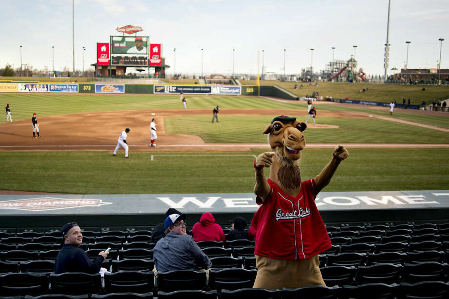 Rall E. Camel warms up the crowd on Wednesday during the Great Lakes Loons home opener against the Lansing Lugnuts. Photo: Neil Blake | Nblake@mdn.net
