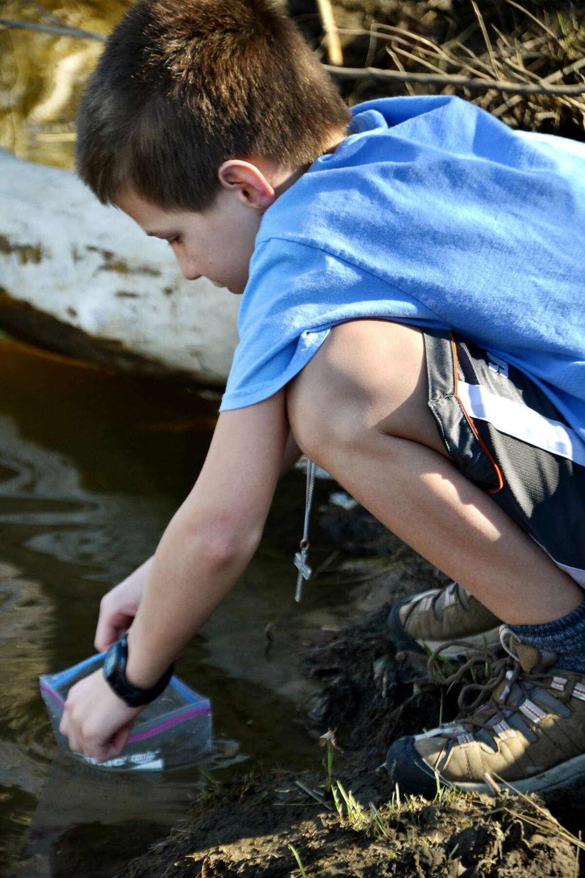 Nathan Striebel prepares to release a salmon smelt into the Chippewa River.
