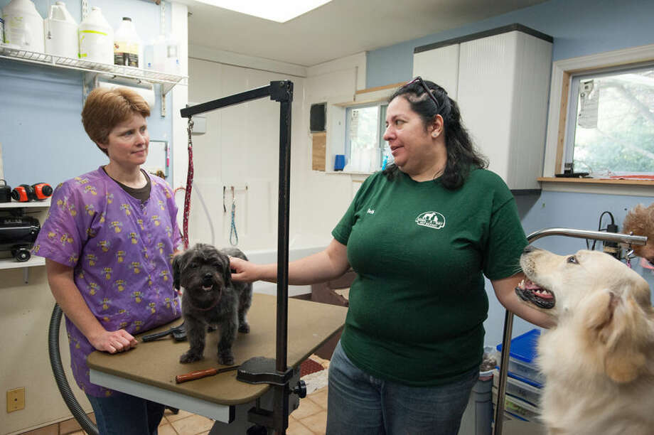 STEVEN SIMPKINS | for the Daily News Co-owners Heather LoColair and Beth Stigleman - Readers Choice winner for best dog grooming. Photo: Steven Simpkins/Midland Daily News