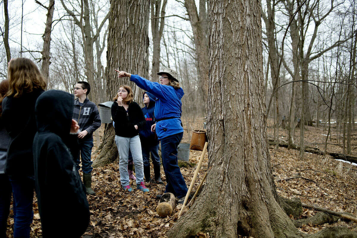 Chippewa Nature Center educator Kathy Gallaher, center, talks about different trees after giving Floyd Elementary fifth-graders a history lesson about the maple syrup making process on Monday in the woods at the Chippewa Nature Center.
