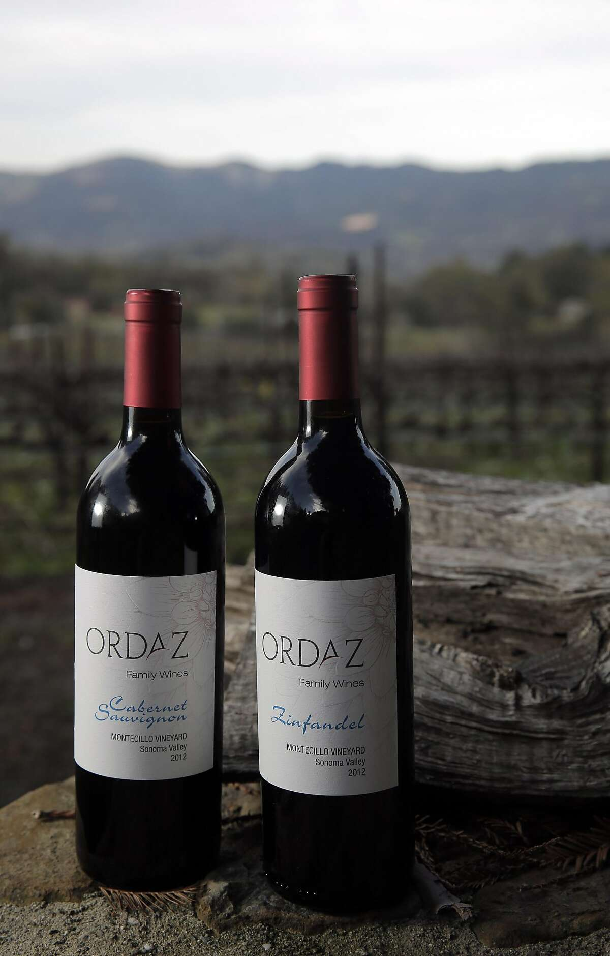 Chuy Ordaz, owner of Palo Alto Vineyard Management, has branched out to producing wine under the label Ordaz Family Wines in Glen Ellen, Calif., on Tuesday, February 23, 2016,