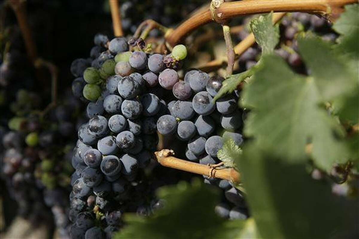 Officials say northern Michigan's wine industry may suffer following two consecutive years of disappointing grape crops.