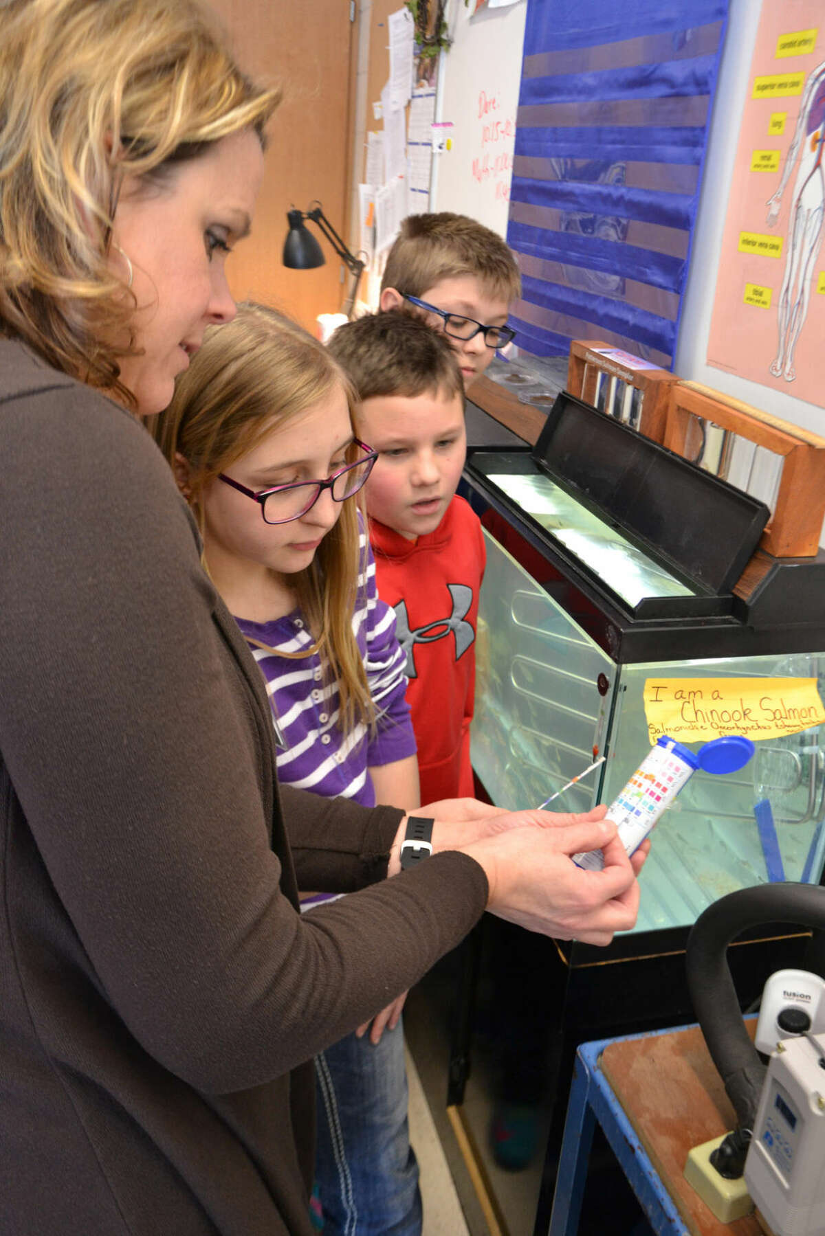 From left, Pine River Elementary School teacher Rebecca Dubuque and students Lauryn Wishowski, Ben Myer and Drew Nestle compare a test strip with a chart to confirm that the water from the classroom fish tank meets the needs of the Chinook salmon.