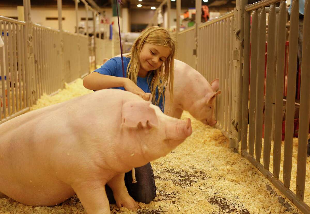 Houston Livestock Show & Rodeo Where: 3 NRG Parkway  The biggest event of the year is scheduled from March 7 through 26, 2017. Children will enjoy being able to interact with animals at the livestock show and play games at the carnival. For tickets go to axs.com/rodeohouston.