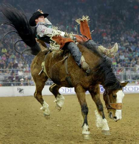 To receive a score in bareback riding, Champion has to stay on the horse for the full eight second ride. Photo: Melissa Phillip, Houston Chronicle / © 2016 Houston Chronicle