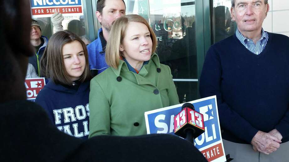 Palatine Supervisor Sara Niccoli announces her candidacy to represent the 46th New York State District Saturday outside Fin market in Guilderland. (Dennis Yusko)