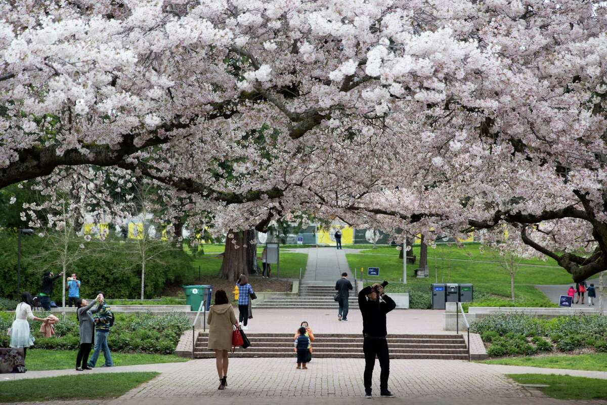 The University of Washington did well in this ranking. Check out the slideshow to see which public universities made the top 25.