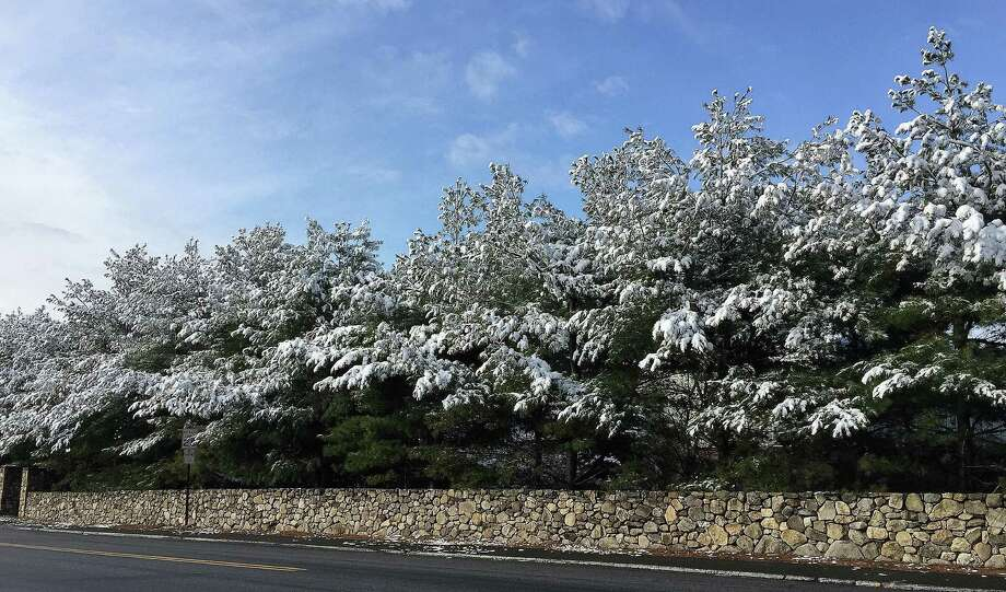 Trees along Unquowa Road were gilde by overnight snowfall Monday, but warming termperatures on the first full day of spring rapidly melted away what may be the last image of winter locally. Photo: Fairfield Citizen / Phil Spalla / Fairfield Citizen