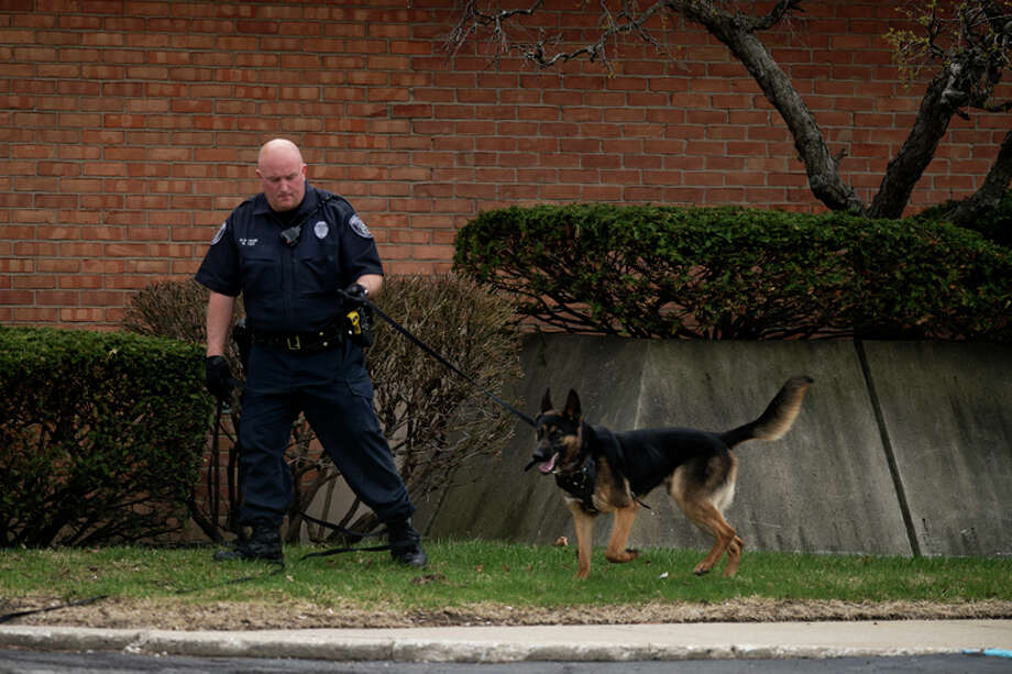 Midland Police K9 Officer Greg Tait walks around Comerica Bank at 401 S. Saginaw Road with police dog Brody after a bank robbery on Wednesday afternoon. Photo: Neil Blake/Midland Daily News / Midland Daily News