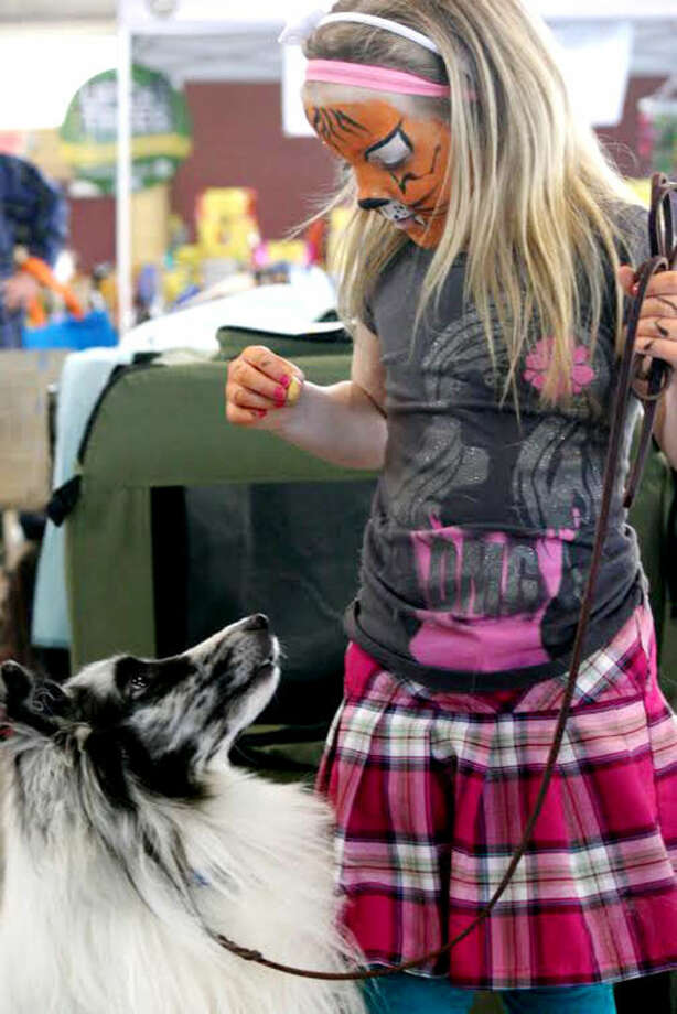 Lily Spann, 6, plays with family pet Icy, a 2-year-old bi-blue Shetland sheepdog, at Sunday's Mid-Michigan Pet Expo. Photo: Hilary Farrell | For The Daily News