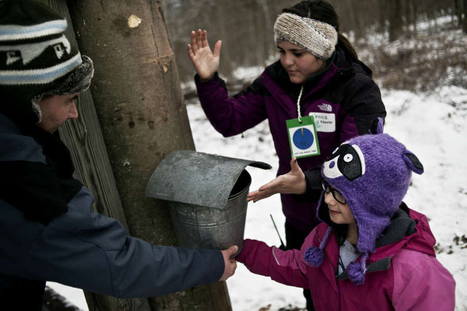 SEAN PROCTOR   sproctor@mdn.netAmelia Schwartz, 5, of Midland, helps Greg Allington, left, and Jessica Page, right, put a bucket on a tap during a tree tapping demonstration Saturday during Maple Syrup Day at the Chippewa Nature Center. Crafts, activities and demonstrations were available throughout the day for visitors who braved the snowy weather. Photo: Sean Proctor/Midland Daily News