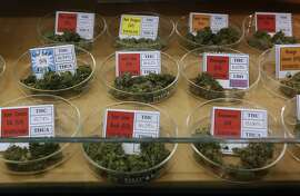 A selection of available medical marijuana is displayed in a glass case at the Harborside Health Center dispensary in Oakland, Calif. on Thursday, July 12, 2012. The Department of Justice served notice that it will seize the assets and shut down Harborside within 20 days.