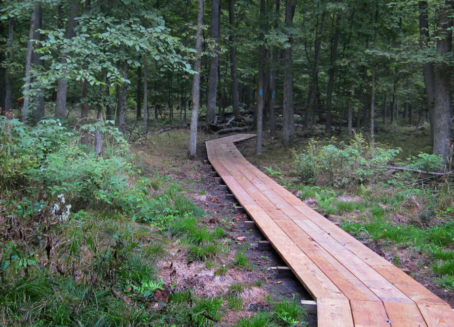 A 70-acre nature preserve in Midland County will be opened to the public for the first time on Sunday, Oct. 12, at 1 p.m. Photo: Photo Provided