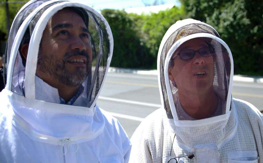 Beekeeper Rick Fink, right, talks with Diistrict 1 City Councilman Roberto Trevino before taking steps to remove a bee-infested tree from the 1200 block of N. Flores Street, Monday, March 21, 2016. (Darren Abate/For the San Antonio Express-News) Photo: Darren Abate, FRE / Darren Abate/For The Express-News