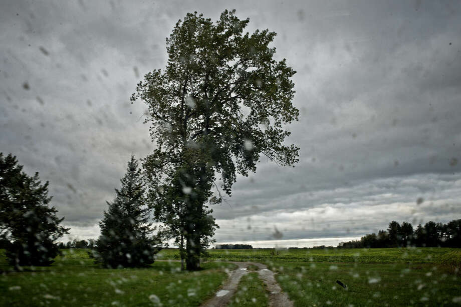 A tree stands against a stormy sky near a cemetery off East Baker Road in Hope. Starting on Saturday, the weekend weather forecast shows high chances of rain and temperatures in the low-to-mid 50s until Wednesday, when the sun will return, bring with it temperatures in the mid 60s. Photo: Sean Proctor |sproctor@mdn.net