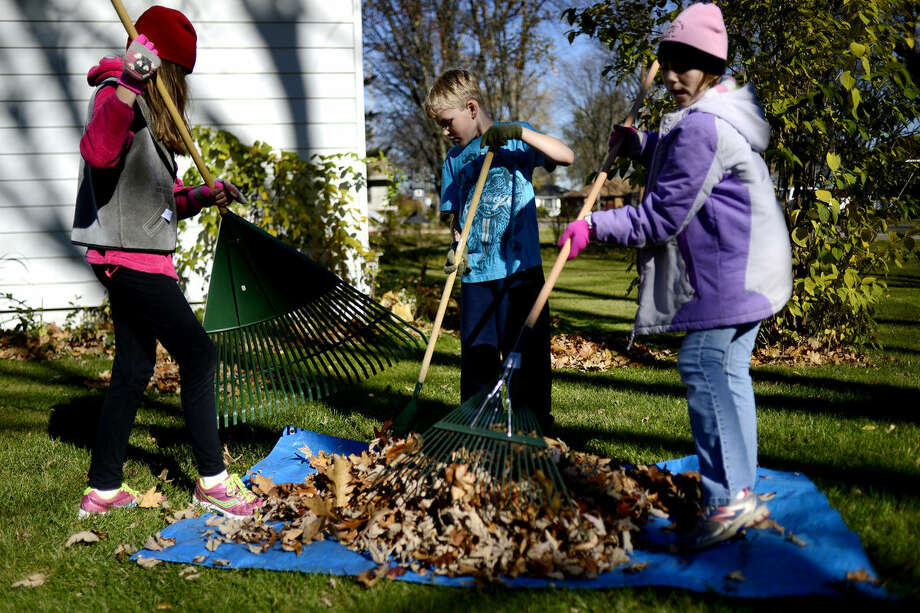From left, Lea Nelson, 10, her brother Gavin, 8, and their cousin Trynity Hoffman, 10, work to clean up the leaves in the yard of their Nana's home in Coleman on Sunday. The three made piles of leaves, raked them onto a tarp and carries the leaves to a compost pile. Photo: Nick King/Midland  Daily News