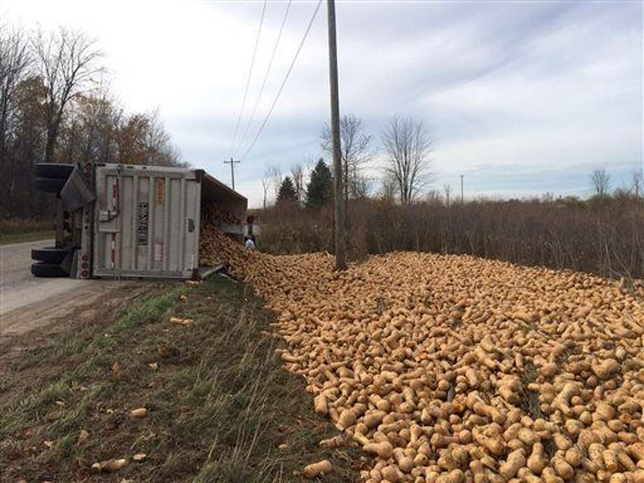 In this Wednesday, Oct. 28, 2015 photo released by the Oceana County Sheriff's Department, an overturned truck with its spilled load of butternut squash is shown in Oceana County's Leavitt Township, Mich. Authorities say the speeding truck hauling 70,000 pounds of butternut squash crashed while going around a curve. (Deputy Tim Simon/Oceana County Sheriff's Department via AP) Photo: Deputy Tim Simon