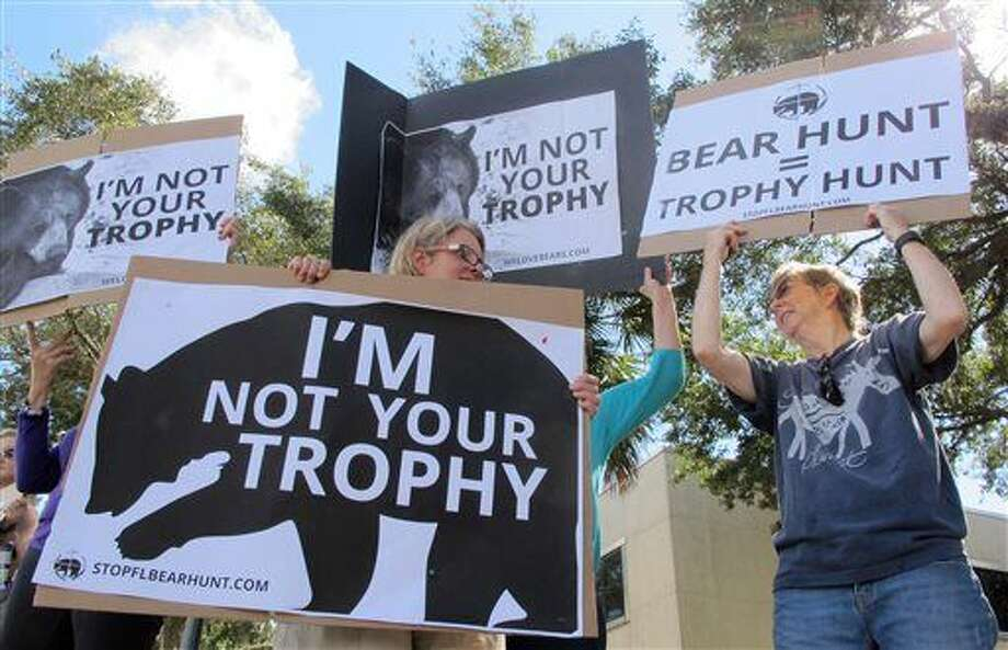 Protesters opposed to bear hunting in Florida demonstrate on a street in downtown Gainesville, Fla., Friday, Oct. 23, 2015. Florida wildlife officials have sold more than 3,200 permits to hunters from all over, including 1970s rocker Ted Nugent and Liesa Priddy, a rancher and Florida Fish and Wildlife Commission member who voted to approve the new hunts. The hunt starts Saturday and goes for a week, or until 320 bears are killed. (AP Photo/Jason H. Dearen) Photo: Jason H. Dearen