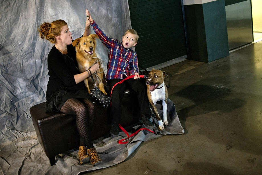Shannon McDonald, left, high-fives her nephew, Max Hubble, 7, while the two get their picture taken with their dogs, Deogee, left, and Harley, during the fifth annual Ties and Tails Gala on Saturday at Dow Diamond. Signatures Photography Studios offered photos for people and their dogs throughout the night. Photo: Nick King | Midland Daily News