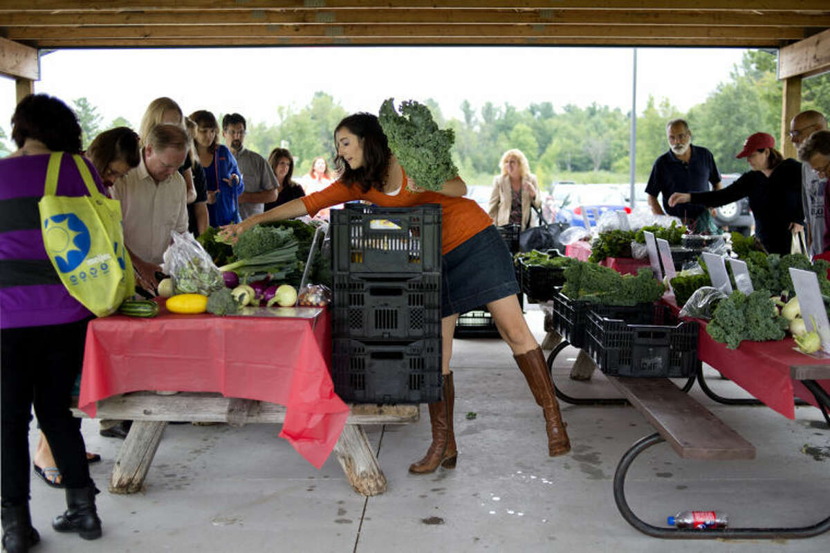 Michelle Monroe, of Alma, places kale on tables for customers during the Monroe Family Organics' Community Supported Agriculture food drop off at Eagle Ridge Church in Midland in this Daily News file photo