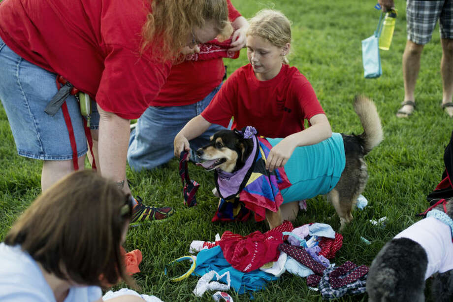 NEIL BLAKE | nblake@mdn.netJennie Nash, left, and Katie Nash, 11, dress their 8-year-old dog, Penelope, as they compete in the Doggy Olympics at the dog park in Chippawassee Park on Wednesday. Photo: Neil Blake/Midland  Daily News
